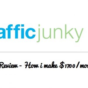 Traffic junky Review